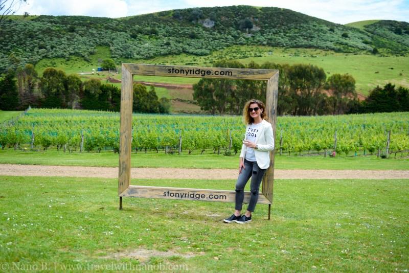 waiheke-island-wine-tour-14