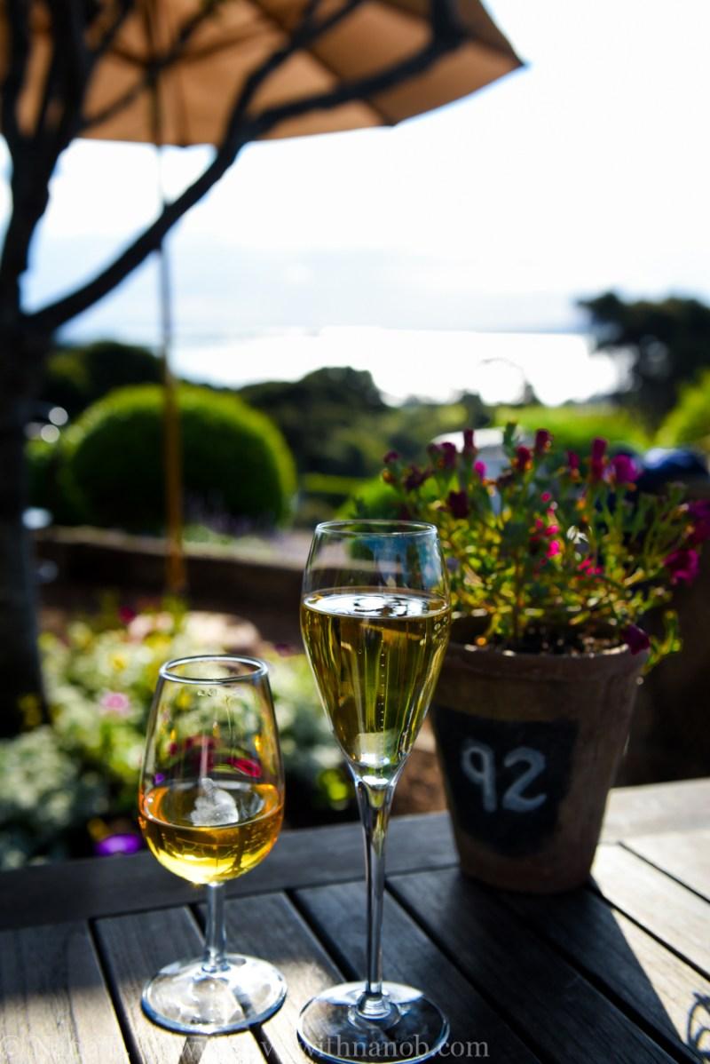 waiheke-island-wine-tour-53