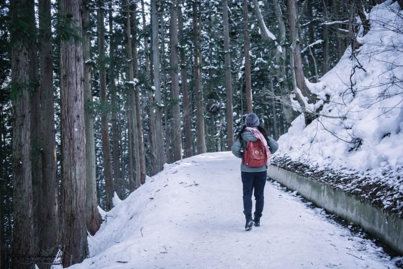 japanese-snow-monkeys-jigokudani-nagano-4