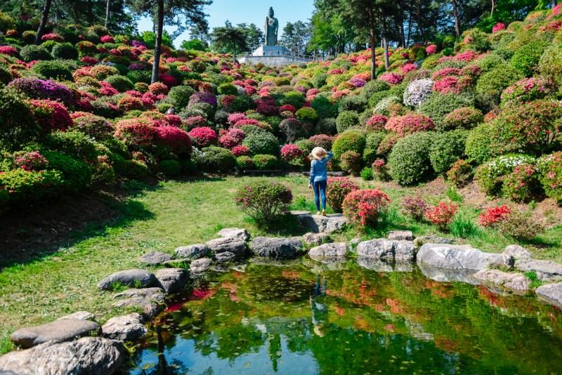 azalea-garden-shiofune-kannon-ji-temple-3-2