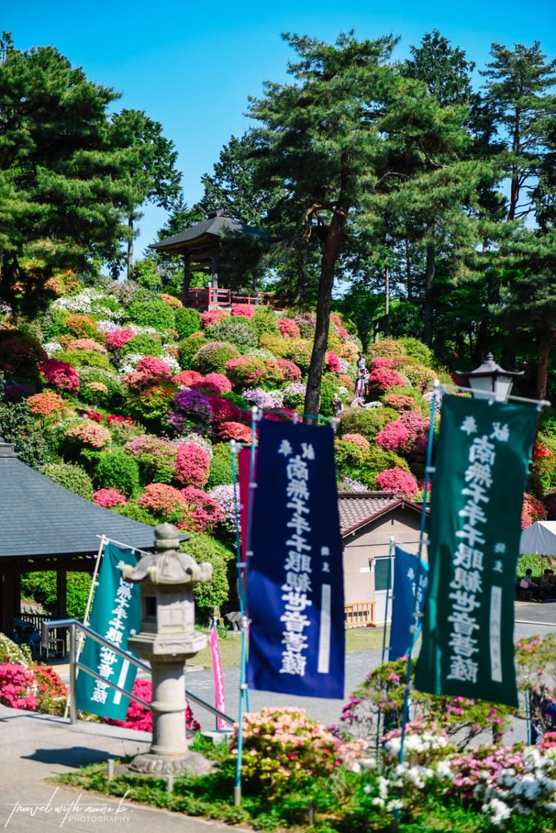 azalea-garden-shiofune-kannon-ji-temple-8