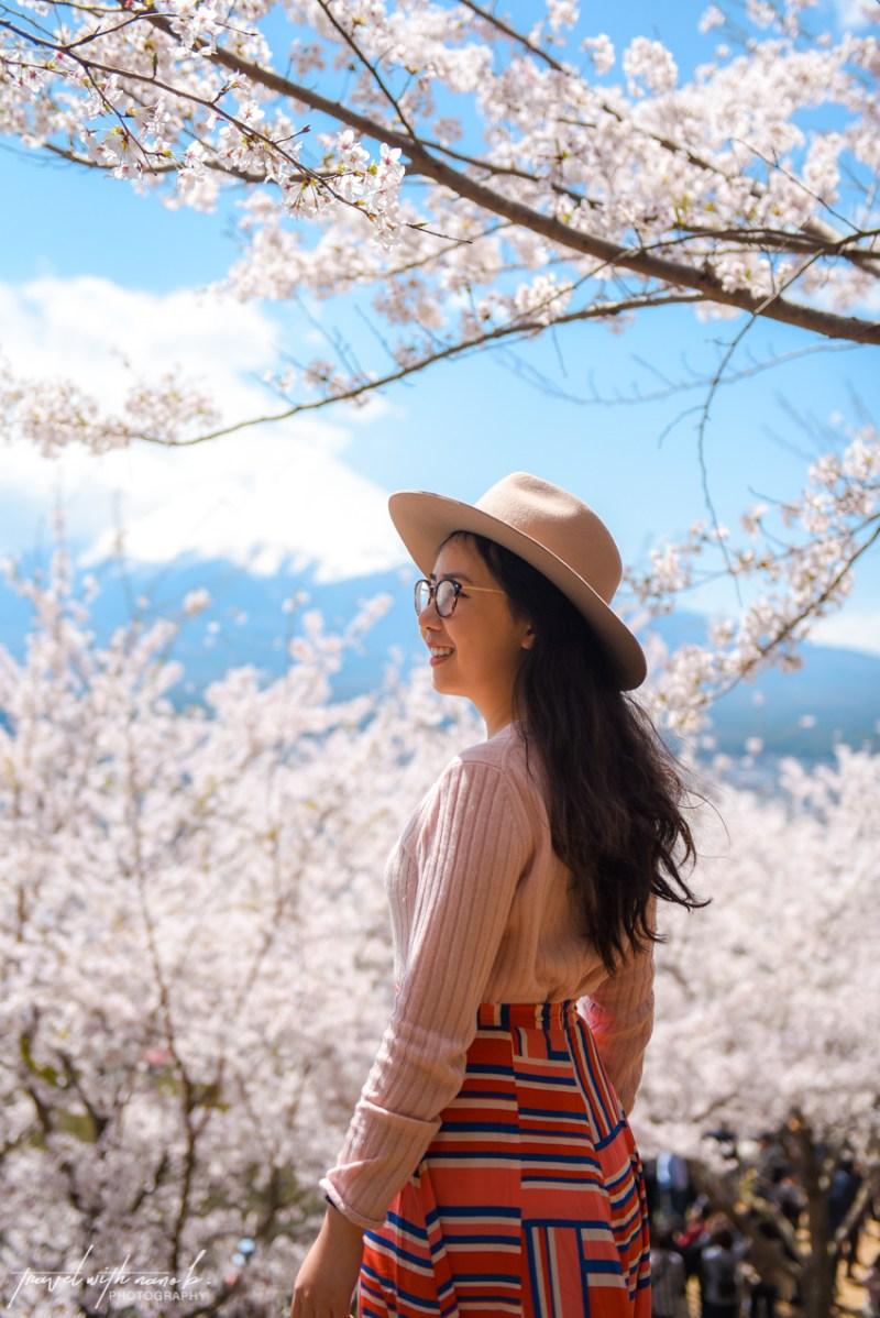 cherry-blossoms-mt-fuji-japan-3