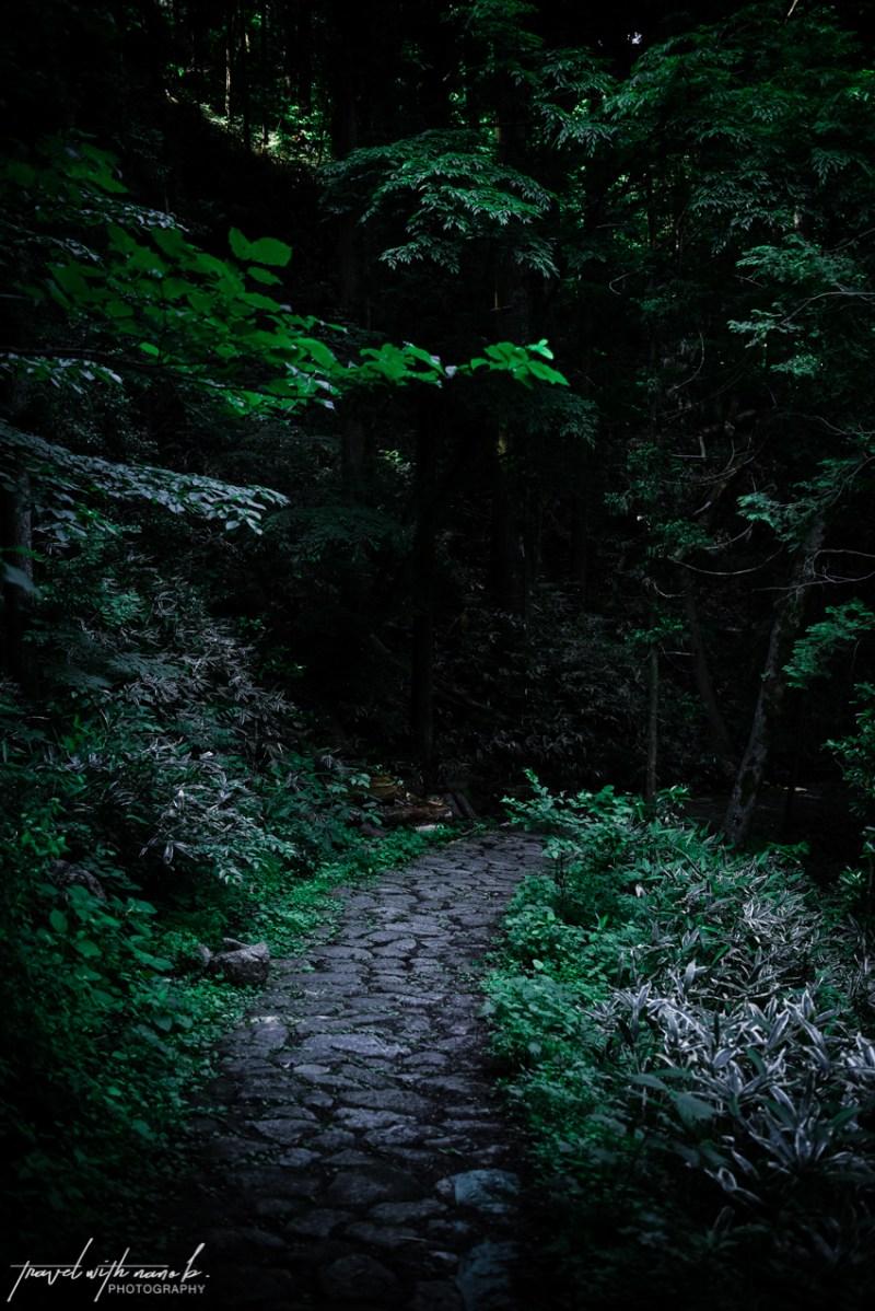 kiso-valley-magome-tsumago-hike-japan-3