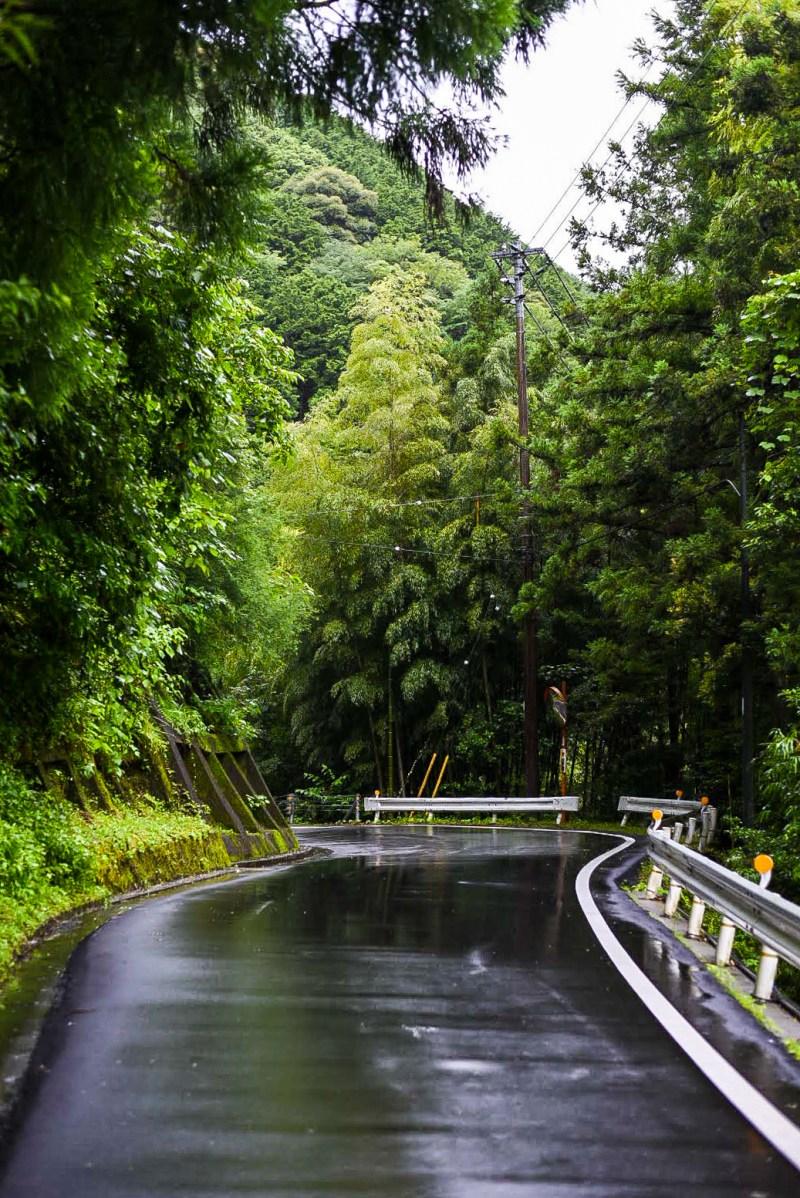 Kochi Cycling Route Views 3