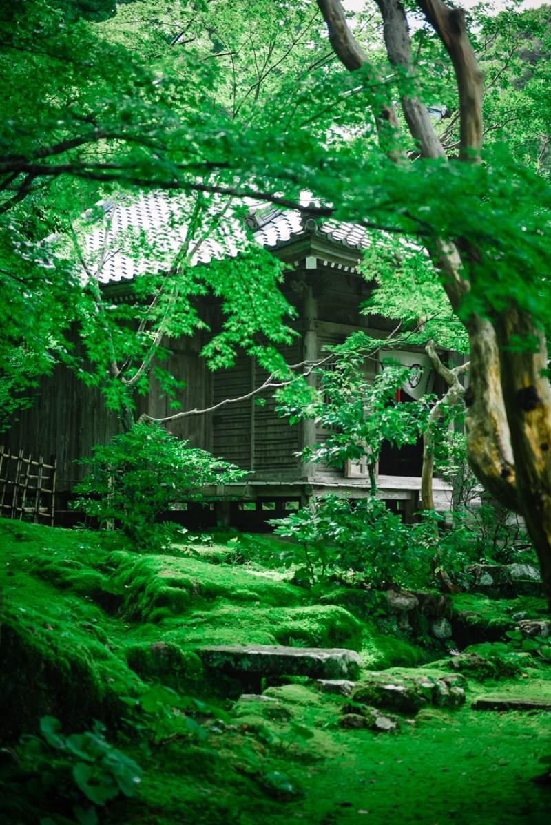 visit-kochi-prefecture-shikoku-japan-21