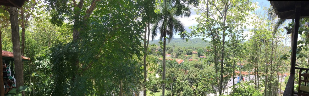 Sweeping forest view of Las Terrazas from the Moka Hotel