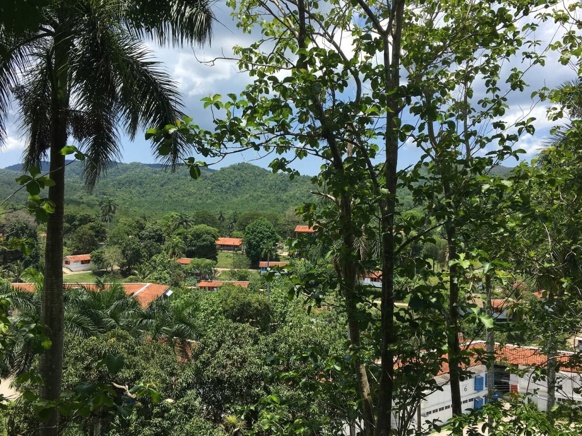 Beautiful forest view of Las Terrazas from the Hotel Moka balcony