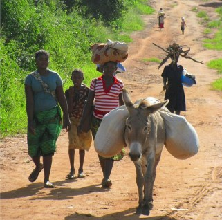 Villagers on a road in Mozambique