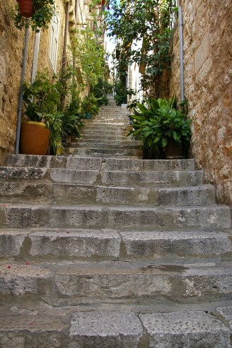 Dubrovnik alley with plants