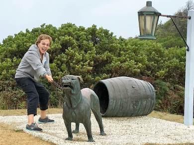 Guard dogs in Tasmania