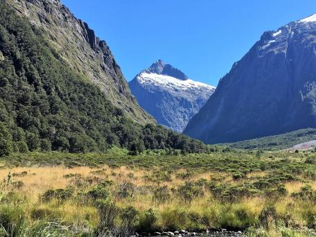 Natural beauty of New Zealand