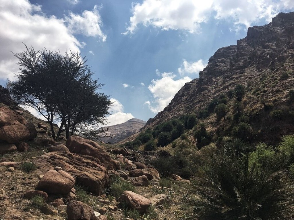 travel mishaps and fails in Jordan
