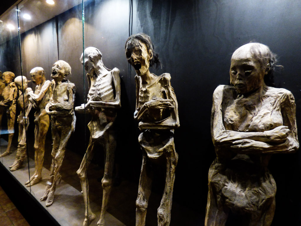 Nunnies in historic museum