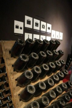 visit wineries. great things to do in Mendoza