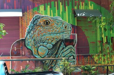 Street Art Graffiti in Mendoza frpm Buenos Aires to Patagonia
