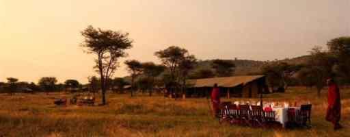 africa, safari, African safari
