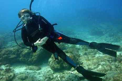 travel, diving, adventure