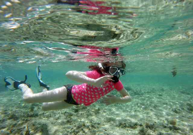 cozumel, snorkeling, learning, wonders of the ocean