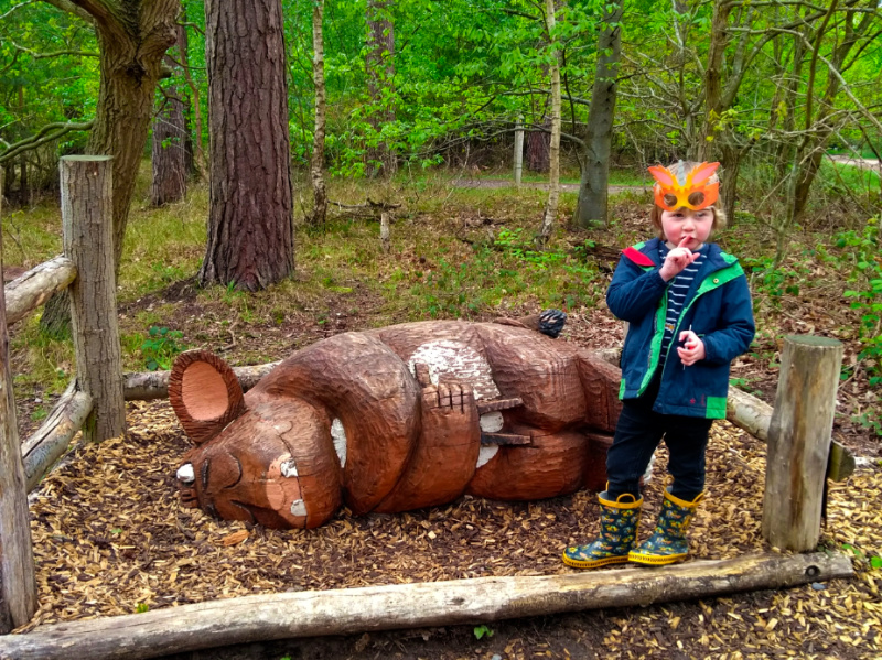Thetford Forest Activities and Trails