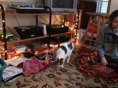 Eddie likes Christmas