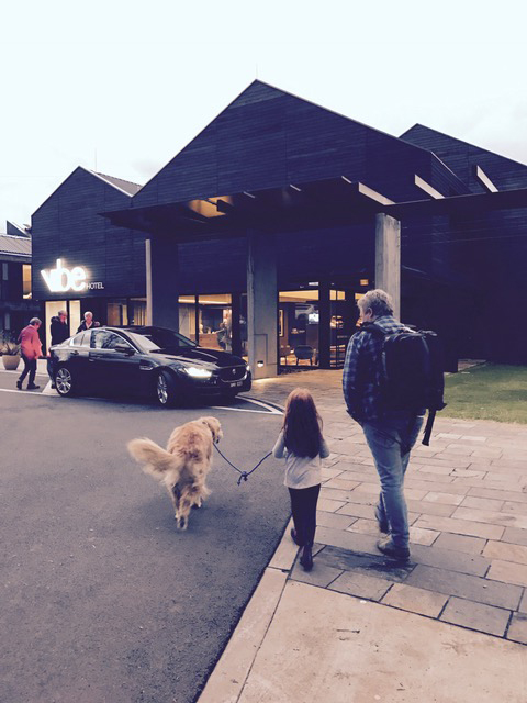 Henry-arriving-at-his-first-hotel2 Marysville - BYO Dog