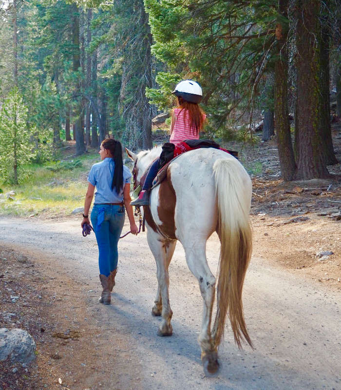 434 Digital Detox at Drakesbad Guest Ranch, California