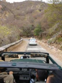 Bala Quila Safari Alwar