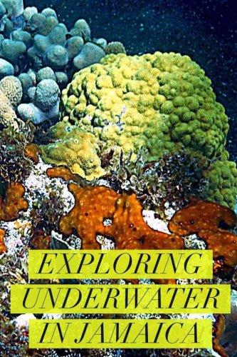 image Jamaica underwater