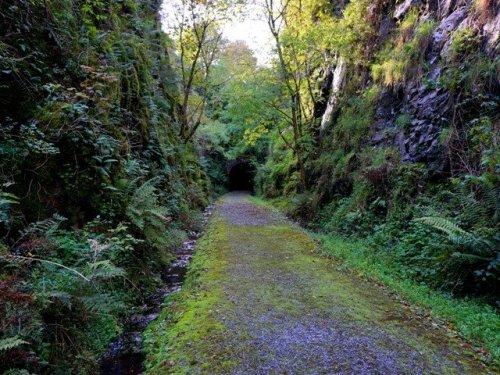 Barnagh tunnel Newcastle West