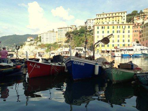 Fishing boats Camogli Italy