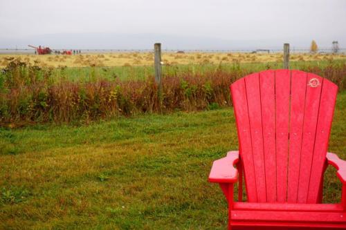 Canada Red Chair Bar U Ranch