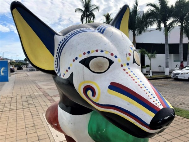 Colima dog Manzanillo