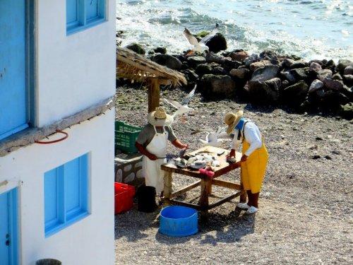 fish cleaning El Pardito island