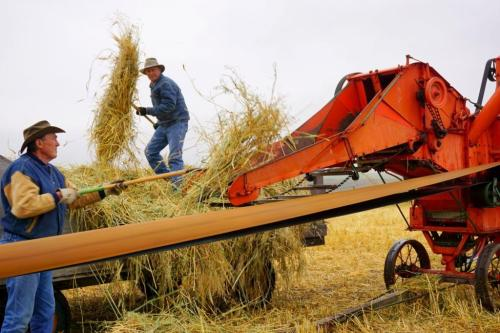 Harvest Bar U Ranch