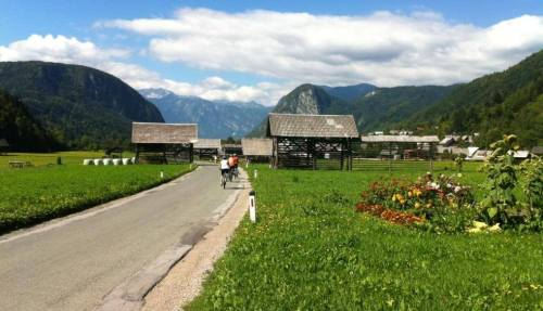 Slovenian hay racks toplars