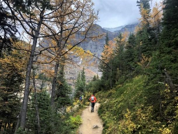 Hiking White Mountain Adventures Banff