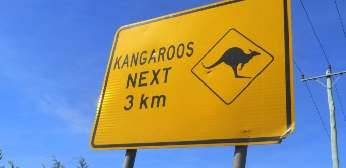 australia signs kangaroo