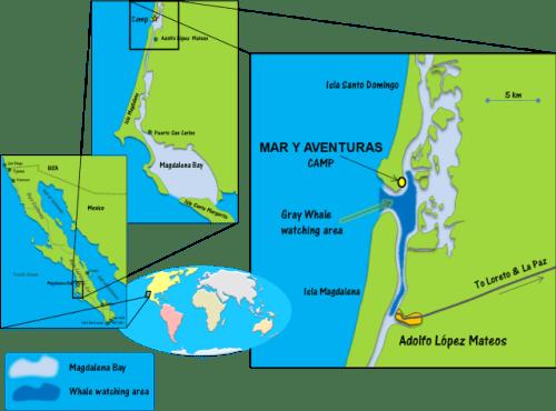 Mar Y Aventuras Magdalena Bay map