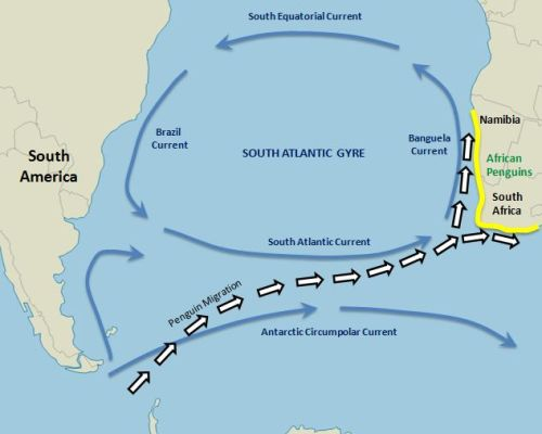 Map South Atlantic Ocean Currents