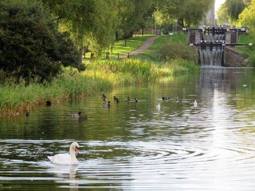 Royal Canal Dublin