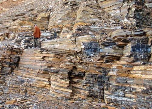 Burgess Shale rock at the Walcott Quarry