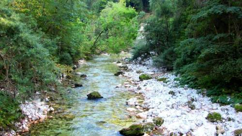 Slovene river