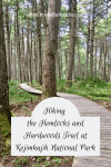 Hiking the Hemlocks and Hardwoods Trail