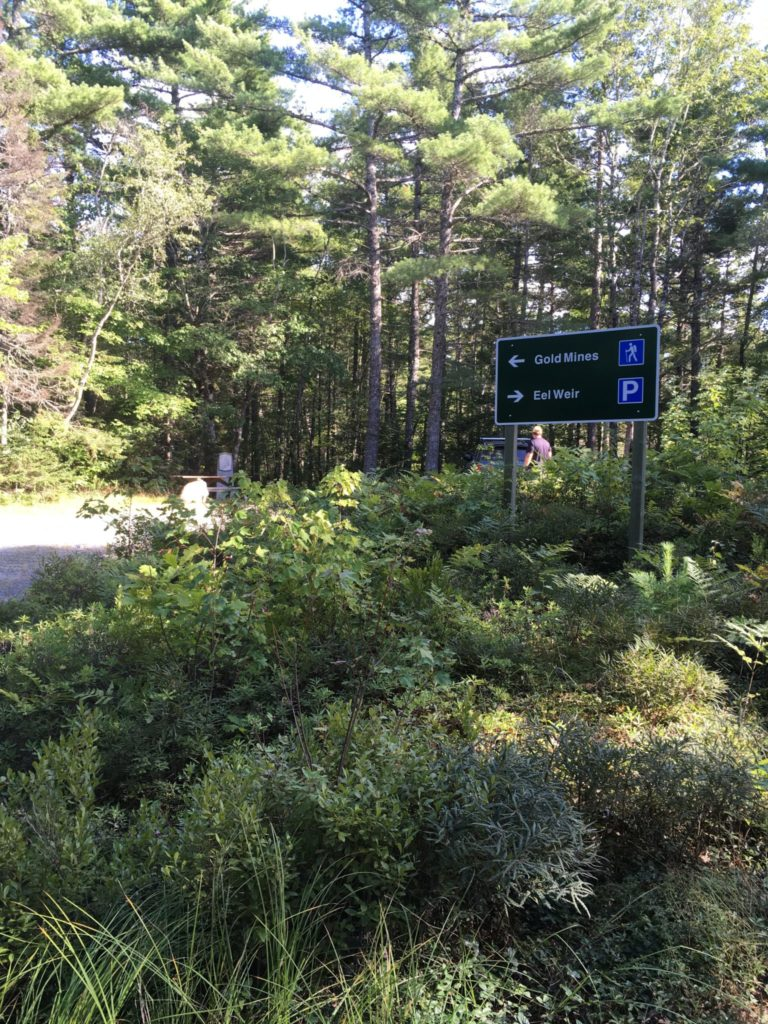 Parking area at Start of Gold Mines Trail