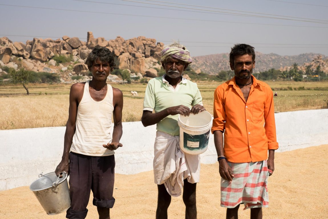Rice farmers in the Hampi countryside.