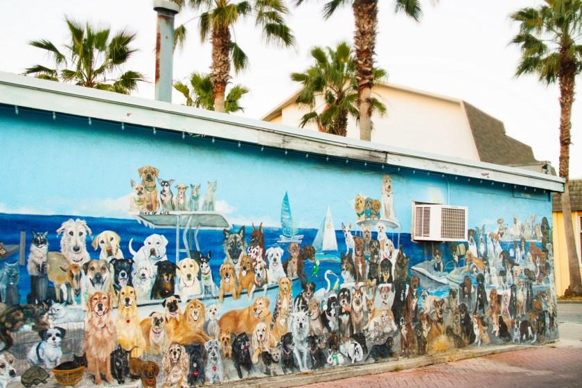 Dog mural in Dunedin, FL