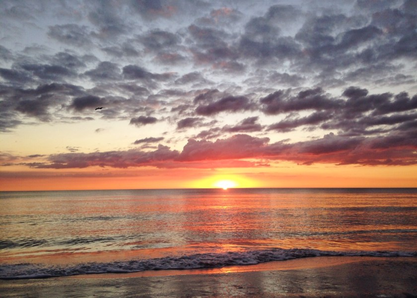 11 Reasons You'll Fall in Love with Anna Maria Island | Travel Taste