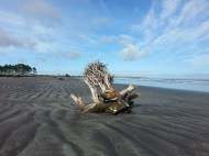 carters-beach-3