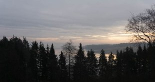 Northumberland weekend views of Kielder