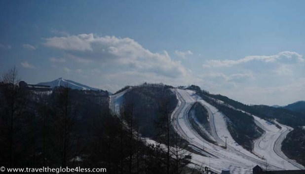 Alpensia skiing in Korea